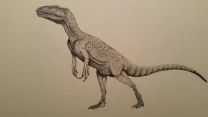chilantaisaurus by spinosaurus1