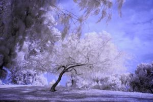 30mm IR III by simple-squamous
