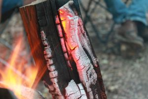 Charred Wood by eleutheria-stock