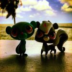 Sunil and Pepper at the beach by 5raptor5