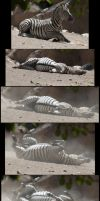 Death of a Zebra by SalsolaStock