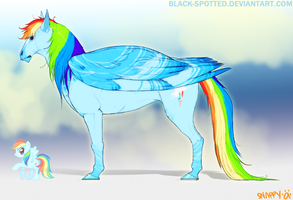 Rainbow Dash - MLP by Black-Spotted