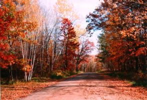 Fall the Falling Leaves by jujubeeze