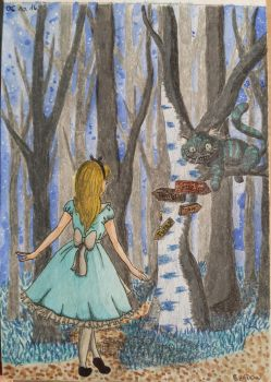 Alice in Wonderland by xShadowArt