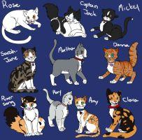 Doctor Who Companion Cats by allissajoanne4