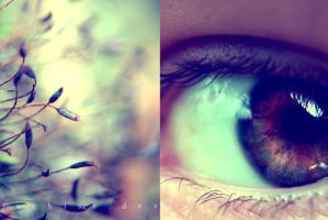 Different vision by Juchise