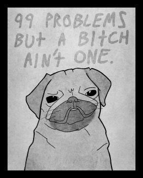 99 Problems Dog by DrSalt