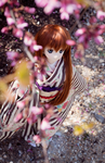 Beneath the cherry blossoms by Miko-Bura