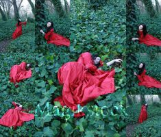 petit chaperon rouge set 3 by magikstock