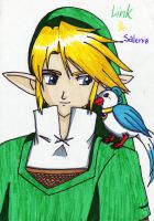 Link and Salenia by Bluecat16