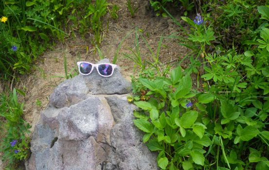 Sunglass Rock by napoland