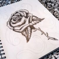 Every Rose has.... by JCee911