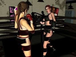 Shadow Boxing by boxhead7