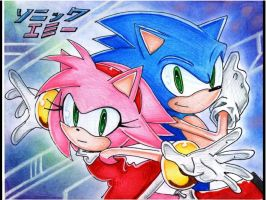 Team Sonic and Amy by SMSSkullLeader