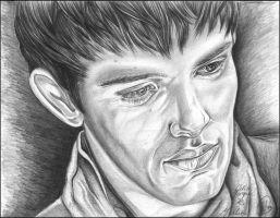 Merlin Final by jeni-art