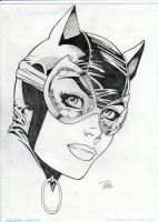 Catwoman VII by computeropolis