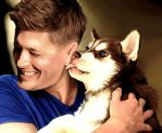 Jensen and the Husky by LicieOIC