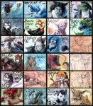 all the badges by hibbary