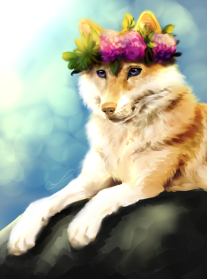 Hippie wolf by Martith