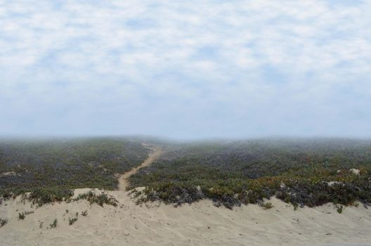 Beach Landscape with Path Background Stock 2074 by annamae22