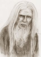Emrys by Painirl