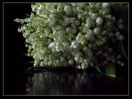 lily of the valley by niepokornik