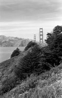 Golden Gate Bridge by richterjw