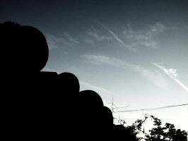 pumpkins on the roof by sundaymorning666