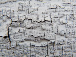 OLD CRACKED WHITE PAINT by PUBLIC-DOMAIN-PICS