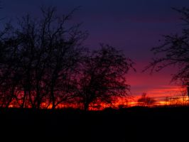 red sunset 2 by thalia5