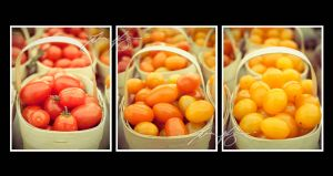 Tomato Triptych by TheTruthSeeker