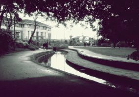 Bournemouth Gardens -  Jan. 2013 by paters87