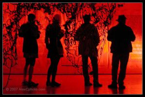 Silhouette in Red by AlexCphoto