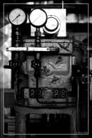 SULZER 2877 by 0-Photocyte