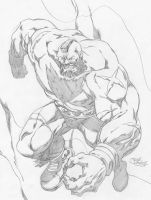 ZANGIEF by Elforim