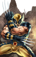 Wolverine colored by sjsegovia