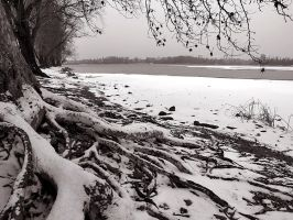 BLIZZARD IN MANTUA SILVER LAKES by Giampictures