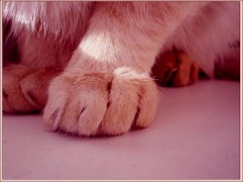 hairy fingers. by uglyappleblossom