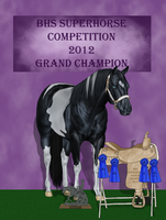 PD Hollywood Tramp 2012 Superhorse grand champion by Wild-Rose-Ranch