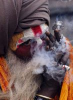 The Great Indian Cigar by gotosumeet