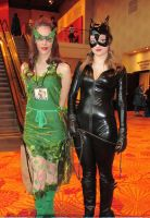 Poison Ivy and Catwoman by jpop52