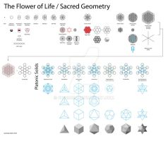 Flower of Life / Sacred Geometry by FBdesign