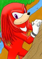 knuckles a color by yumeKasai129