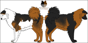 Dog Genetics Examples: Patterns by Leonca