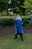 2014-08-31 Wizard in Park 04 by skydancer-stock