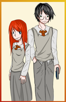 HP: Ginny x Harry 1 by ConcealedShadows