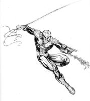 Spidey Sketch by teach