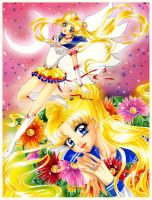 Sailor Moon Fan Art by Honey-san