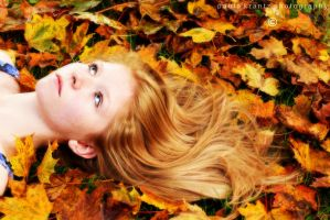 Autumn II by Thilu