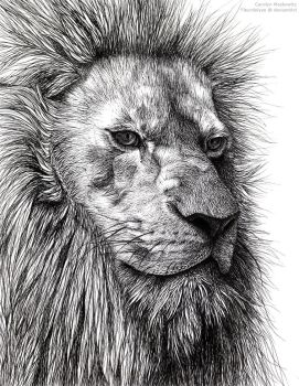 Lion in Repose by Fleurdelyse
